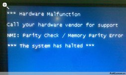 Parity Check/Memory Parity Error, The system has halted
